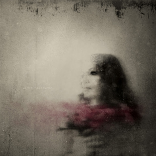 Magic flowers, fine art photography by Alessandra Favetto