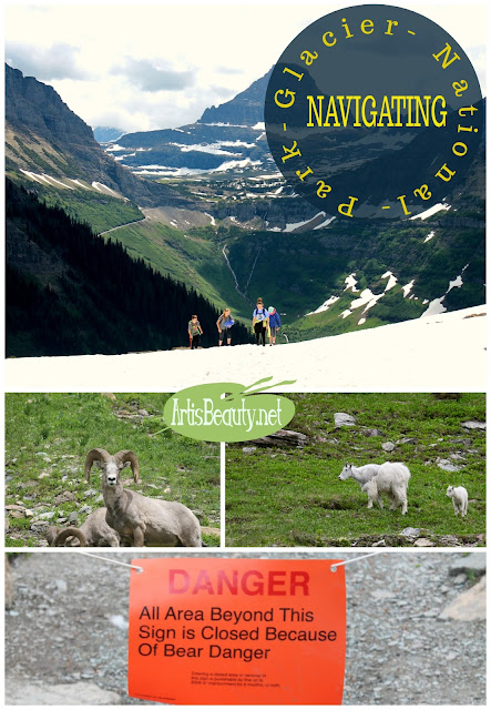 tips on navigation Glacier National park Hiking Kids family NPS summer vacation travel wanderlust