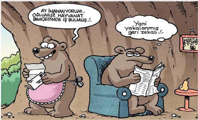 ayı karikatürü