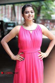 Actress Gayatri Rema Pictures in Pink Dress  0011.jpg