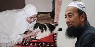 Hukum Bulu Kucing Menurut 4 Mazhab
