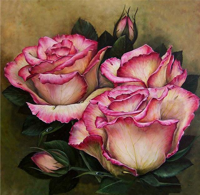 vẽ hoa hồng