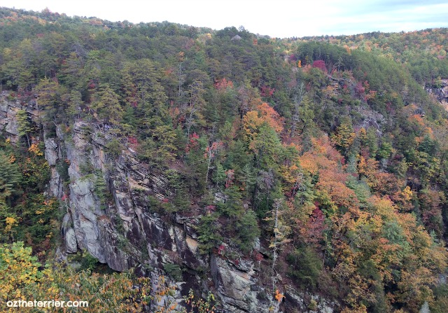 tallulah gorge state park view from north rim trail