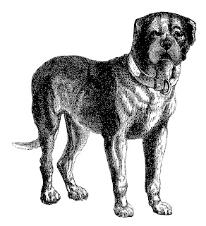 Digital Dog Download Vintage Clip Art