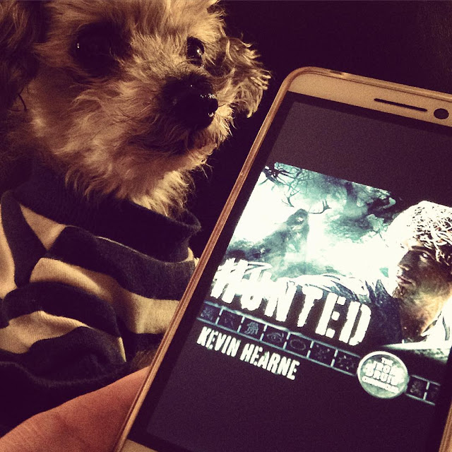 A sleek grey poodle, Murchie, looms behind a white iPod with Hunted's cover on it. Murchie wears a blue and white striped t-shirt. The book's cover features a red-haired white man looking over his shoulder at an ominous, horned figure that lurks beneath a tree. The whole photo is a dark sepia tone.
