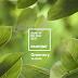 Cor de 2017: Greenery por Pantone