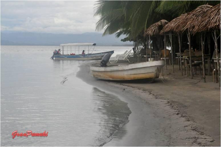 La playa de las Estrellas en Bocas del Toro es un lugar paradisiáco y sigular. En Blog de Viajes, Bocas del Toro con niños