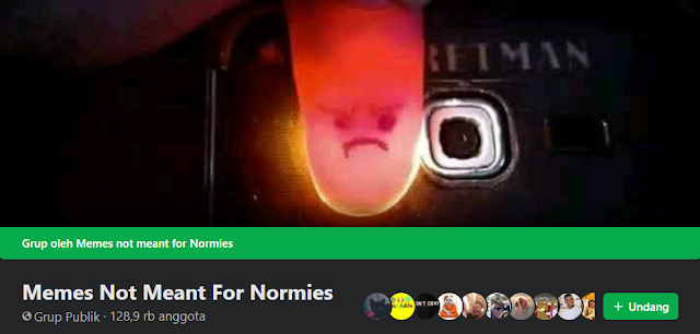 Memes Not Meant For Normies