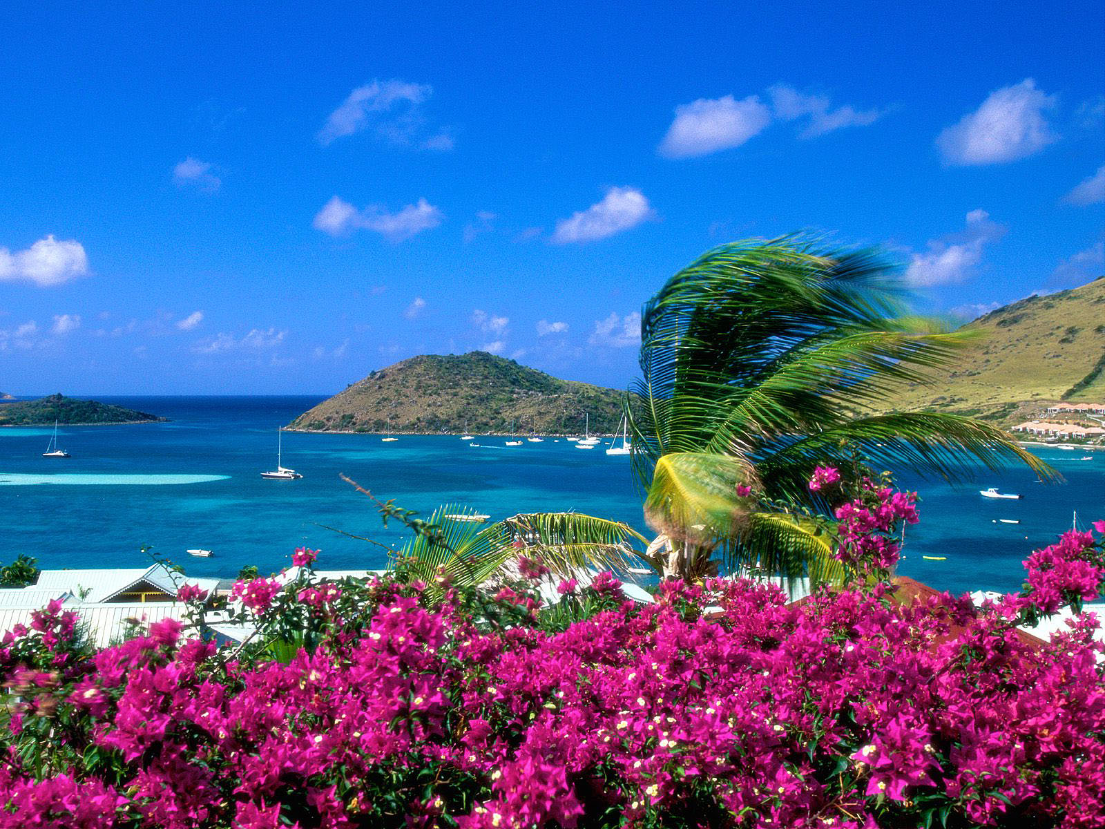 Zomer achtergronden deel 2 hd wallpapers for Best windows in the world