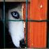 Επιτέλους! Στο αυτόφωρο όσοι βασανίζουν ζώα