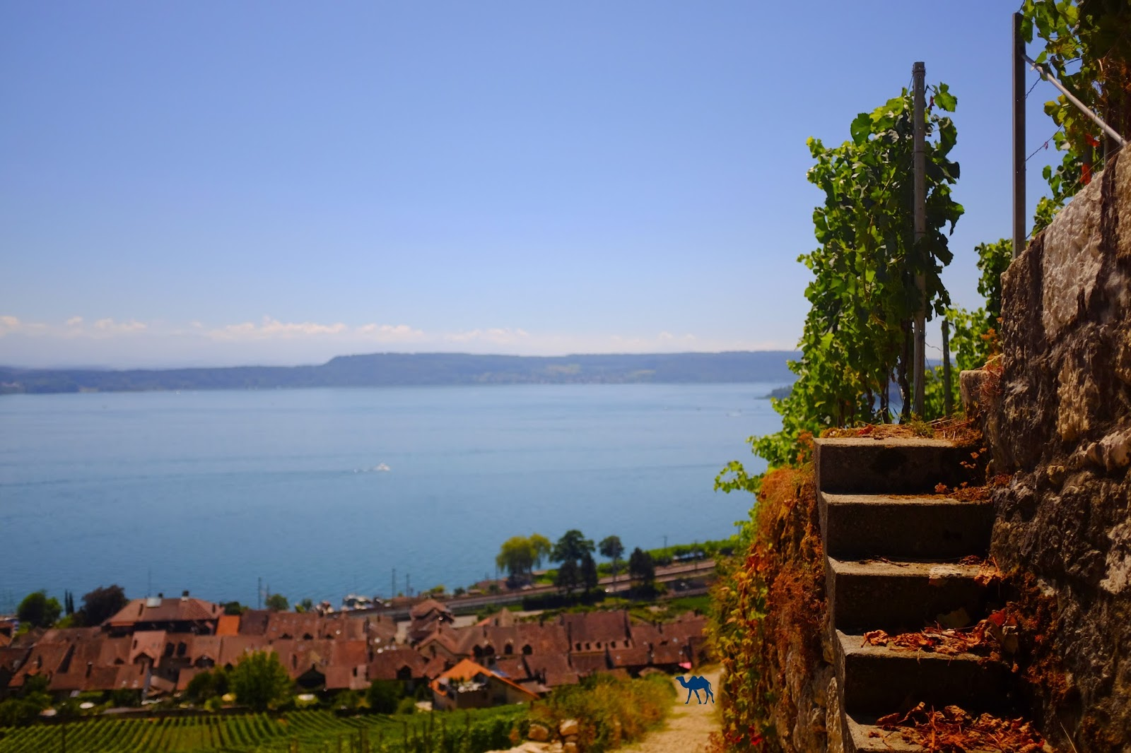 Le Chameau Bleu - Escalier de Bienne - Séjour en Suisse