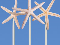 Starfish wind farm (Photo-Illustration Credit: Edmon de Haro) Click to Enlarge.
