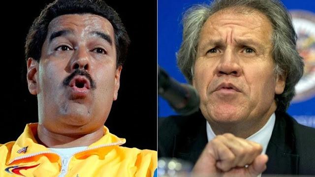 """Luis Almagro aseguró que """"es ridículo"""" hablar de una mediación para Venezuela"""