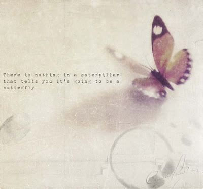 butterfly-quotes-for-her-5