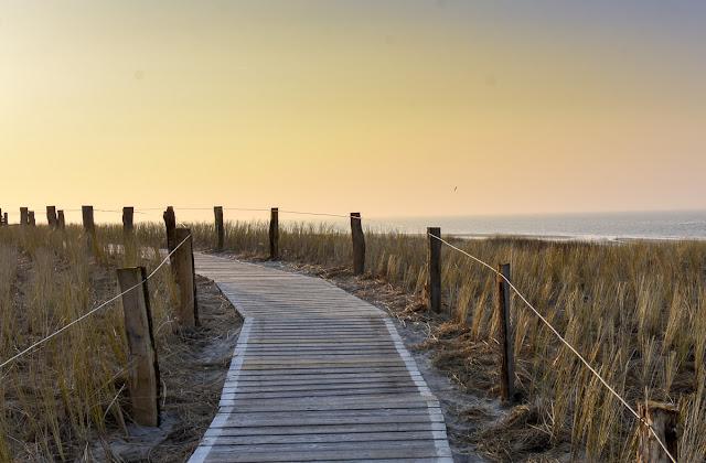 Langeoog, Nordsee, Urlaub, Inselfotografie, Inselfotograf, demipress