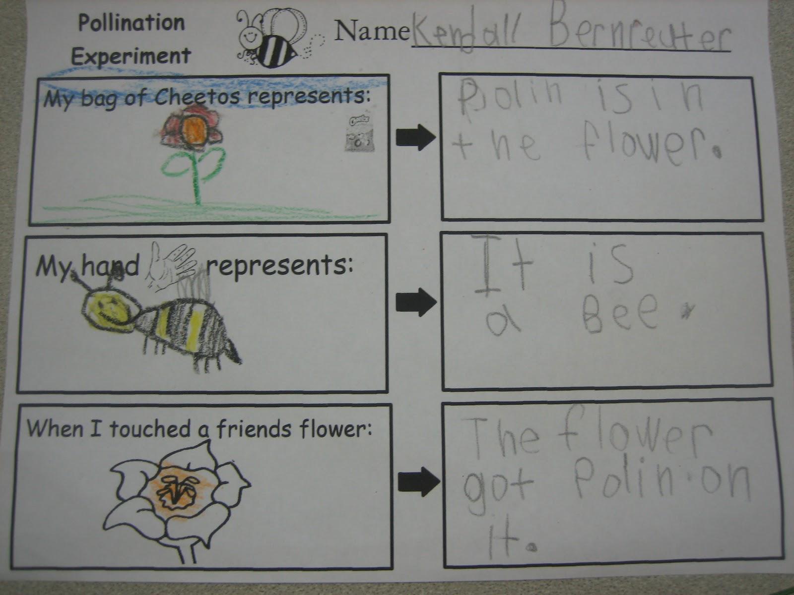 Pollination Science Lesson