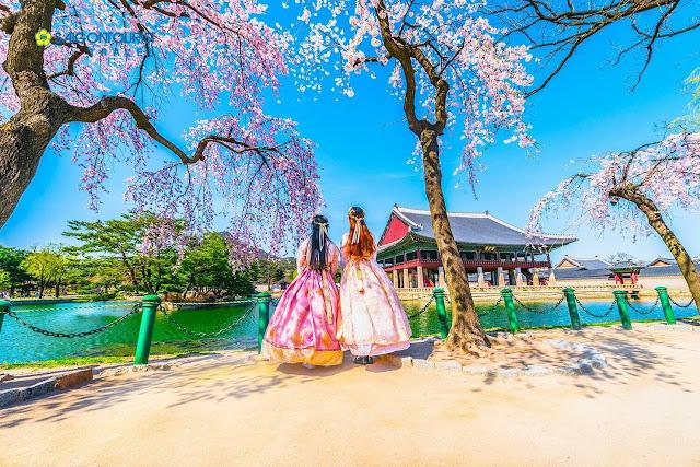 chọn trung tâm du học Hàn Quốc uy tín
