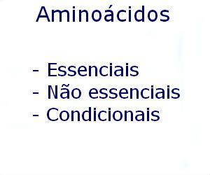 Aminoácidos essenciais não condicionais vantagens propriedades