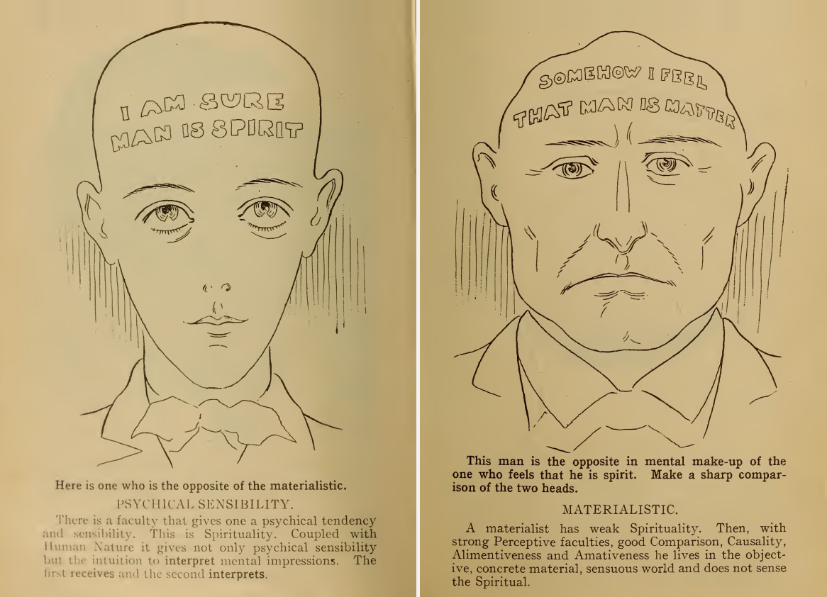 On physiognomy of the face or what information can be obtained by looking at a person