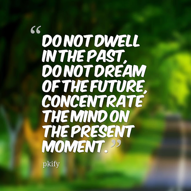 Do Not Dwell in the Past, Do Not Dream of the Future Life Quotes