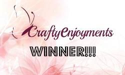 http://craftyenjoyments.blogspot.com.au/