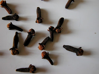 Giroflier - Syzygium aromaticum - Clou de Girofle