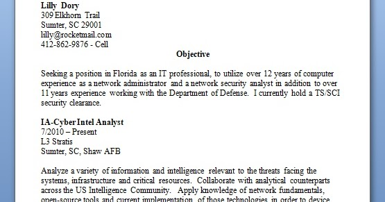 network security analyst sample resume format in word free
