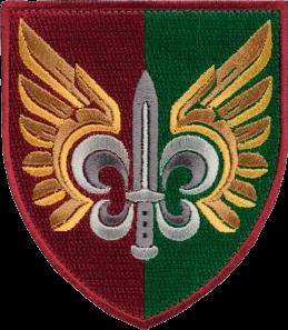 нарукавна емблема 132-го окремого розвідувального батальйону ДШВ