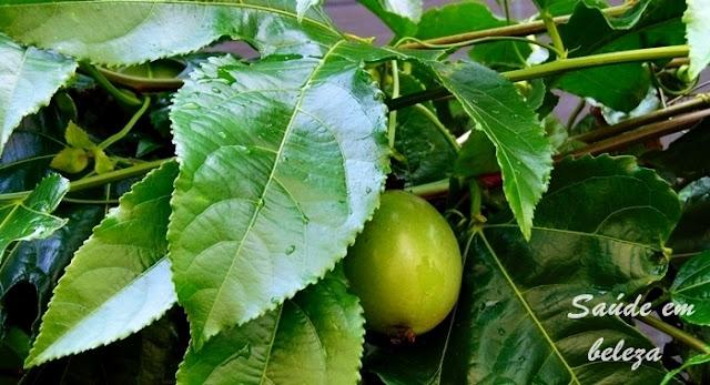 Benefícios e propriedades do maracujá