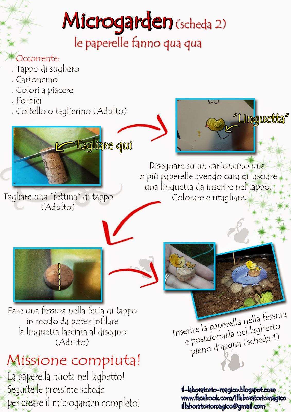 Il laboratorio magico microgarden scheda 2 le for Laghetto per papere
