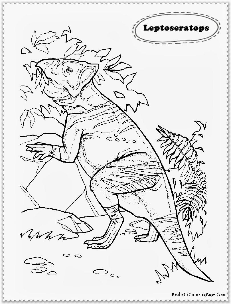 realistic animals coloring pages ly Coloring Pages