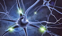 Research identifies a potential new target for treating Alzheimer's disease.