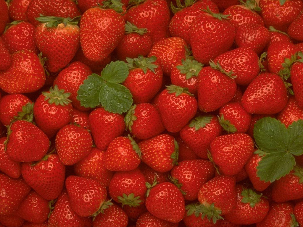 http://2.bp.blogspot.com/-MP248YcD8CI/TcCxLLU4vrI/AAAAAAAAAD4/PY-4MhUMNqQ/s1600/Strawberry-Wallpaper-fruit-6102241-1024-768.jpg