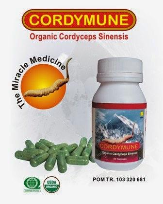 cordymune, cordymune asli, cordymune original, cordymune nasa, distributor cordymune, cordymune jogja, manfaat cordymune, khasiat cordymune, toko kasimura, kasimura herbal