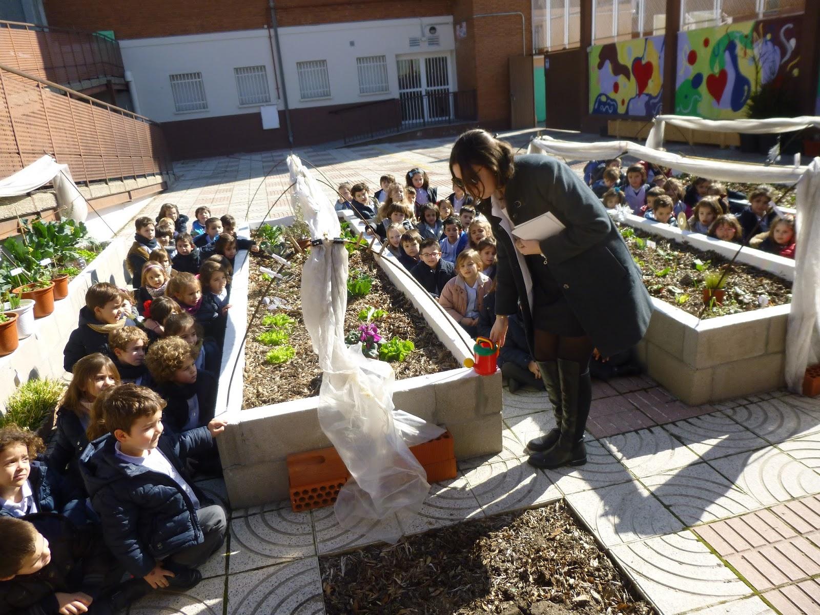 Agustinas Valladolid - 2017 - Infantil 2 - Inglés en el Huerto 4