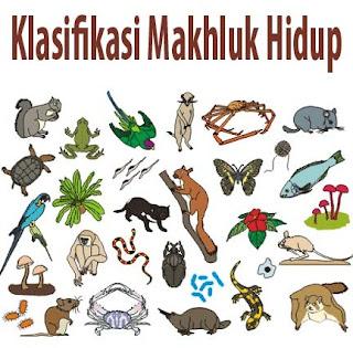 https://wkyes.blogspot.com/2017/09/klasifikasi-makhluk-hidup-di-bumi.html
