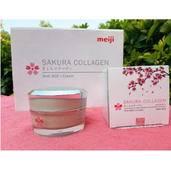 Review Sakura Collagen Cream Anti AGE'S