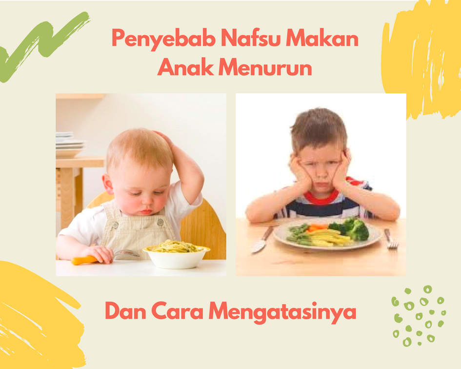 Penyebab Nafsu Makan Anak Menurun Dan Cara Mengatasinya
