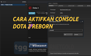 Cara Terbaru Aktifkan Console DOTA 2 Reborn