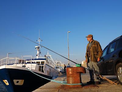 30 settembre 2016 - Una bella pescata sul porto di Mola di Bari