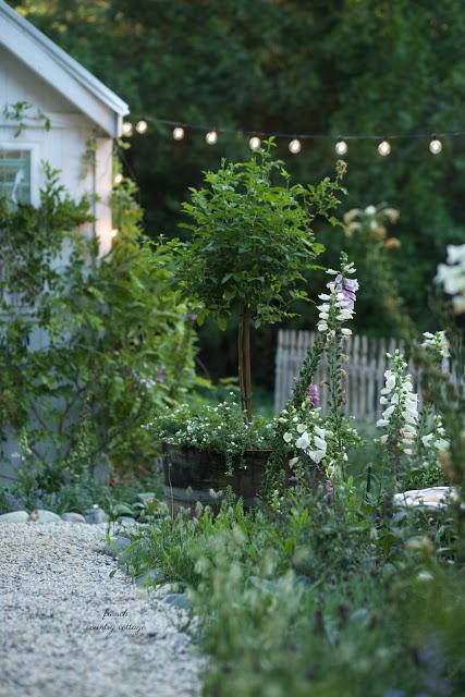 whiskey barrel planter in garden