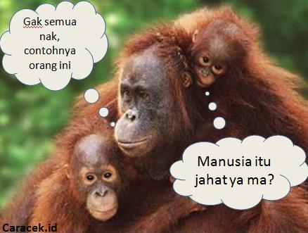 gambar-hari-binatang-sedunia-1