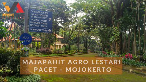 majapahit agro lestari pacet wisata outbound pacet improve vision
