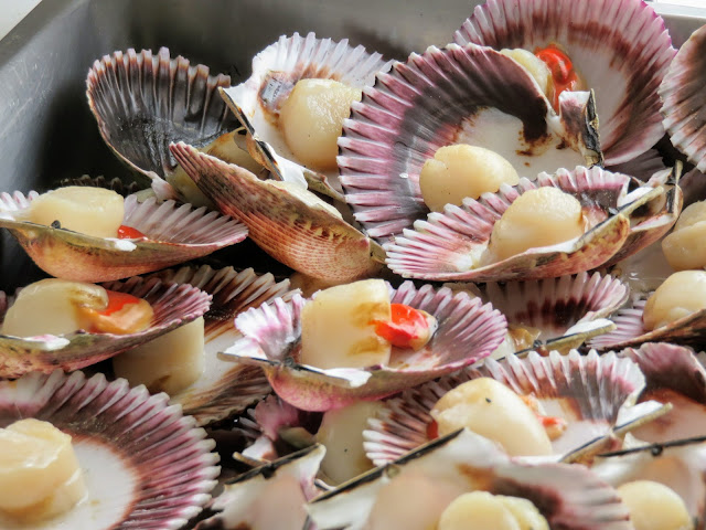 Scallops on the shell at San Isidro Mercado in Lima Peru