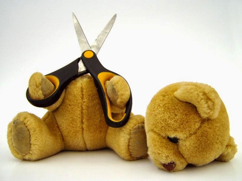 Teddy-cut-his-head-oops-funny-pics-800x600.jpg