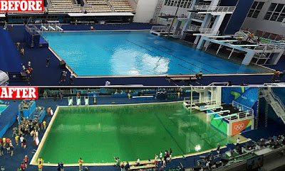 Magnon 39 S Meanderings Rio Dive Pool 2016