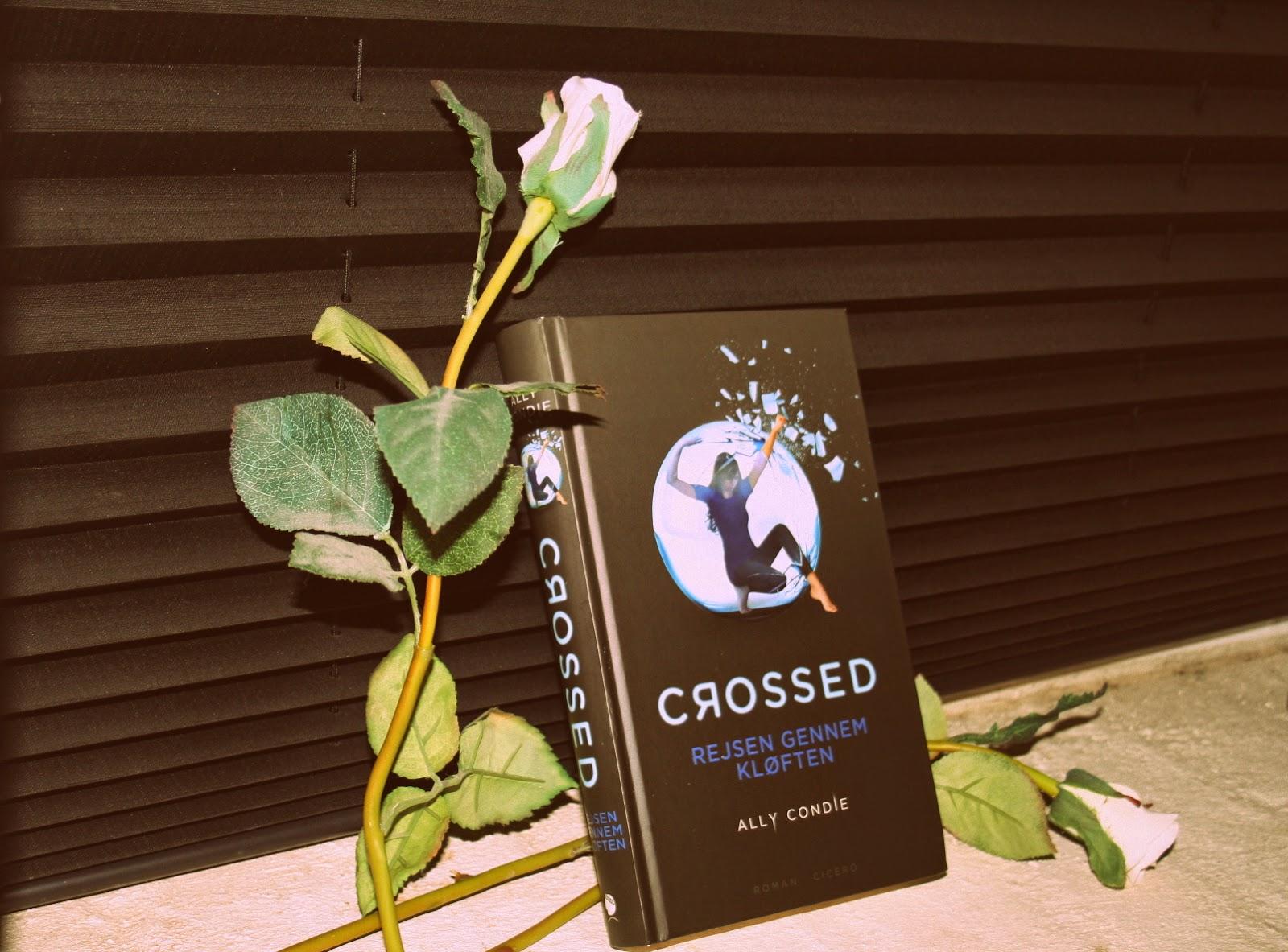 Crossed rejsen gennem kløften af Ally Condie
