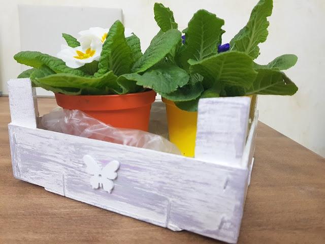 riciclo creativo cassetta della frutta, porta oggetti sottovaso creativo.