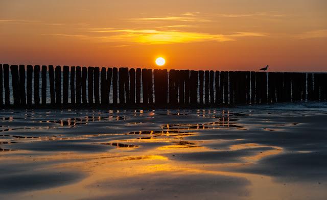 Cadzand-Bad, Breskens, Niederlande, Nordsee, Reisen, Beach, Holland, Meer, Sunset, sunrise, boot, Fototipps, Nikon, D750,