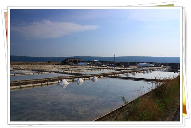 Cuencas de sedimentación de las salinas de Secovlje